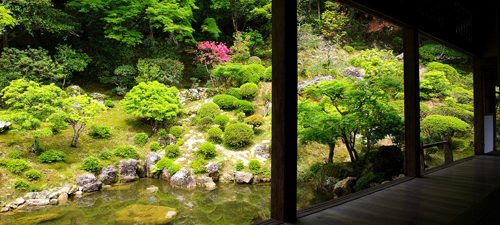 重要文化財の本堂や名勝庭園 竹林寺